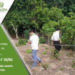 Khảo sát xây dựng nhà Anh Phong Định Hòa, Thủ Dầu Một