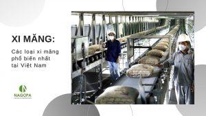 Xi Măng Xây Nhà: Các loại xi măng phổ biến nhất hiện nay tại Việt Nam